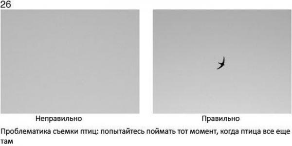 Прикрепленное изображение: 02.jpg